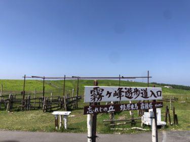 ビーナスライン&霧ヶ峰キャンプ場&諏訪湖花火