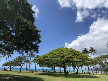 ハワイ旅行 オアフ観光